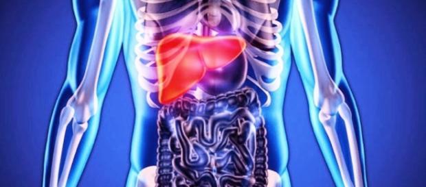 Conheça os sintomas da hepatite B