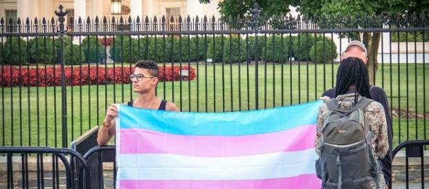 Overview of President Trump's official memo to ban transpeople from the military - Photo: Flickr