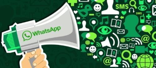 Ecco alcuni trucchi di Whatsapp