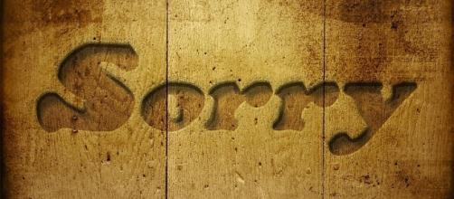 Apologize (Image credit: Pixabay)