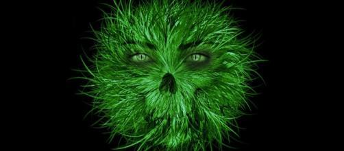 Greed-eyed monster. Image via Pixabay