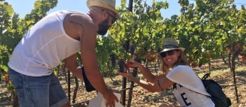 La vendemmia più grande d'Europa in Sicilia, confermato successo per il Mandrarossa Vineyard Tour 2017 a Menfi