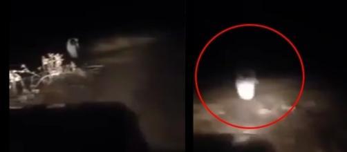 Mais um vídeo aterrorizante encontrada na internet ( Foto - Youtube )