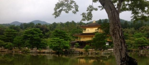 Il tempio d'oro di Kyoto (Giappone) immerso nella natura zen