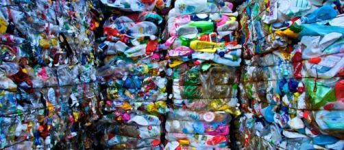 El hombre ha generado 8.300 toneladas de plástico en 75 años. - noticiariodirecto.com