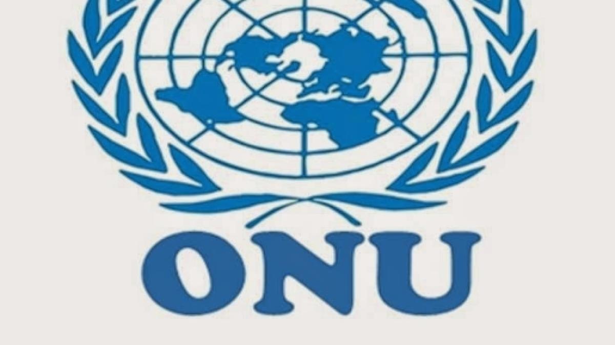 Conheça a ONU - Organização das Nações Unidas 57bed03017