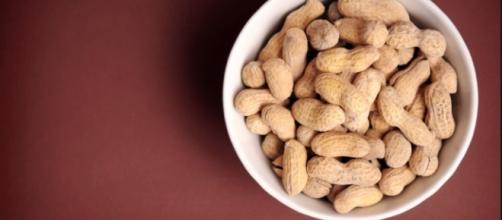 peanuts | by USDAgov peanuts | by USDAgov