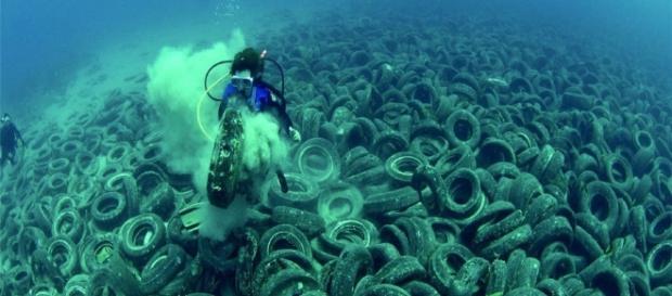 O lixo humano que vai para o mar pode comprometer a vida marinha