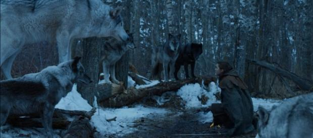 The direwolves as mythical creatures on 'Game of Thrones' that represent the Starks. ~ YouTube/Game Of Thrones