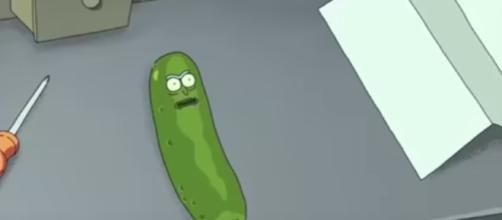 Pickle Rick in Rick and Morty Season 3 (Rick and Morty / YouTube)