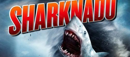 ''Sharknado'' está disponível na Netflix