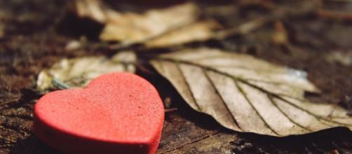 Free photo: Heart, Love, Deco, Decoration - Free Image on Pixabay ... - pixabay.com