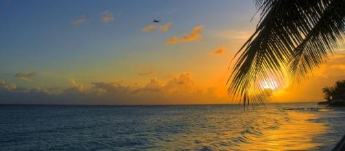 Jeremy Meeks and Chloe Green spotted on romantic getaway in Barbados - Image by Berit Watkin, Flickr