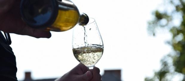 wine glass (pixabay, pixabay license - author: mezeizsani)