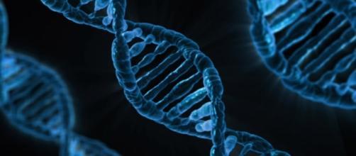 Gene manipulation leading to healing of diseases