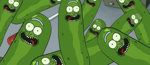 "Image Credit - Facebook page ""Pickle Rick"""