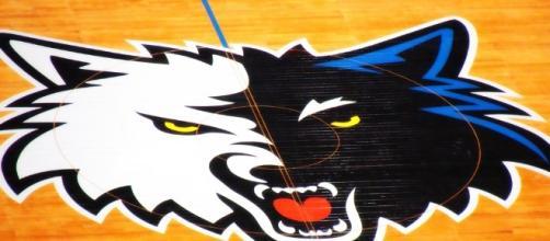 Minnesota Timberwolves franchise logo | Flickr | Doug Wallick