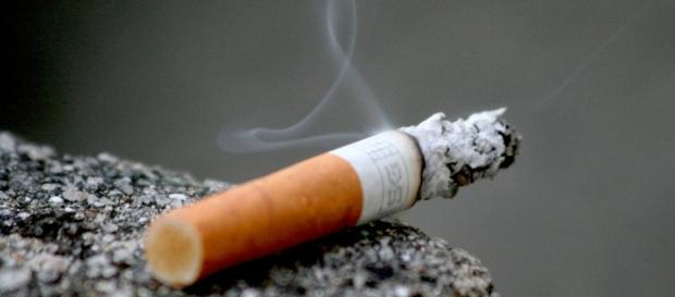 A photo showing a cigarette - Flickr/Raul Lieberwirth