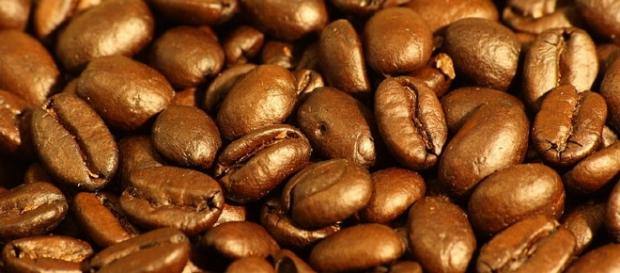 Coffee beans / Photo via Sage Ross, Wikimedia Commons