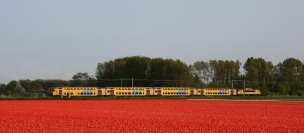Treno olandese - Secondo le ferrovie olandesi da gennaio il 100% dei treni viaggia a energia eolica