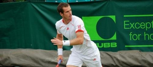 Andy Murray by Carine06 (Wikimedia Commons - wikimedia.org)
