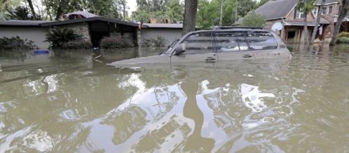 Despite Hurricanes Harvey and Irma, science has no idea if climate ... - washingtonexaminer.com