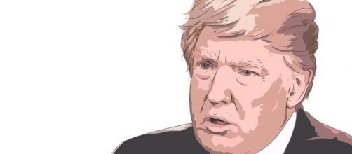 Free illustration: Donald Trump - Free Image on Pixabay - 2333743 - pixabay.com