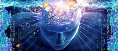 Cérebro humano está sendo descomplicado