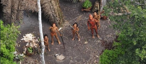Brazilian massacre of uncontacted natives is nothing new (G.Miranda/Funai/Survival International)