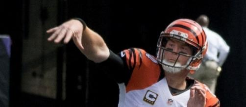 Head coach Marvin Lewis said Andy Dalton's job as starting QB is secure -- Keith Allison via WikiCommons