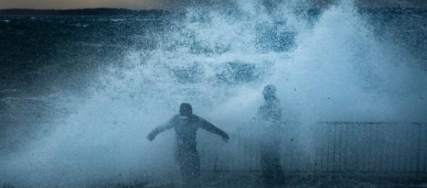 Wind storm spares much of Western Washington | KOMO - komonews.com