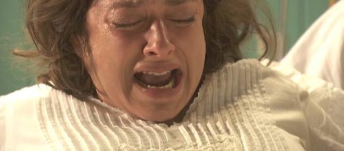 Il Segreto anticipazioni: il ritorno di Cristobal, il parto di Candela, l'addio di Lucas