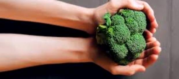 Risultati immagini per mangiare bene microbiota