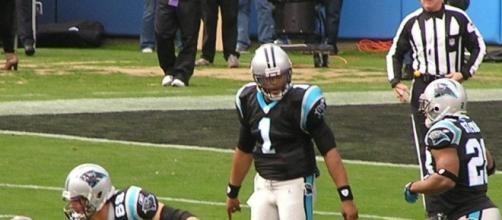 The Carolina Panthers (Wikimedia Commons/AnthonySC1988)