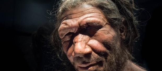 Reconstrução de como seria a aparência do Homem de Neandertal