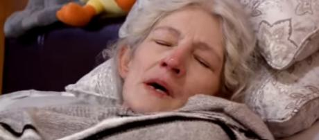"""The Brown family is reportedly filming for """"Alaskan Bush People"""" season 8. [Image via Discovery/YouTube]"""