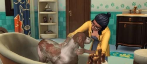 An insider scoop reveals why burglars might not make it to 'The Sims 4.' Image credit - The Sims/YouTube