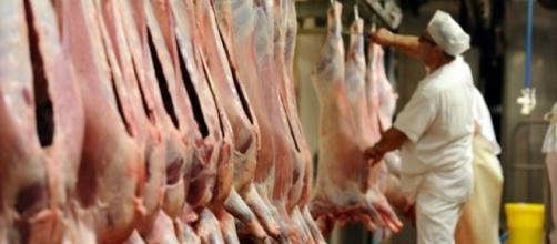 Abattoirs: des «dysfonctionnements majeurs» - liberation.fr