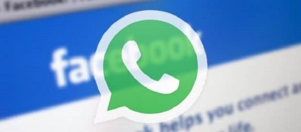 WhatsApp rischia di non poter più fare a meno di Facebook