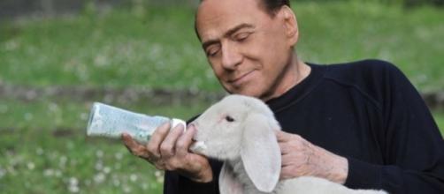Silvio Berlusconi pronto ad allattare una lunga lista di micro partiti pur di vincere le prossime elezioni