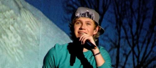 Niall Horan - (Image Credit: Alesiax/Wikimedia Commons)
