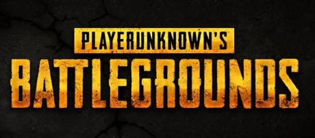 'PlayerUnknown's Batlegrounds' might get a single-player campaign but there's a catch. Bluehole/YouTube