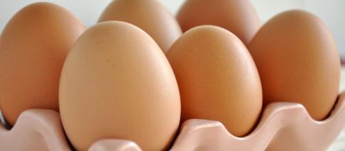 A OMS recomenda o consumo de um ovo por dia