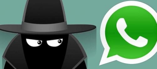 Novità Whasapp: per il web e l'app spia WhatsAgent - androidaba.com