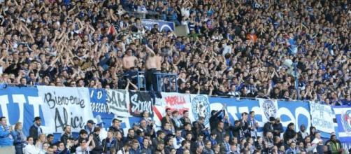 Football | Racing Strasbourg: 15650 abonnés, record pulvérisé - dna.fr