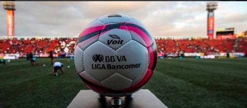 Jornada 12: Pumas jugará en Querétaro; América en Toluca. - com.mx
