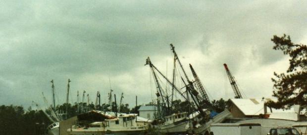 After Hurricane Hugo, McCellanville, SC 1989 | McCellanville… | Flickr - flickr.com