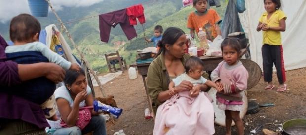 Indígenas desplazados de sus tierras, acusados de ser narcos, los despojan violentamente