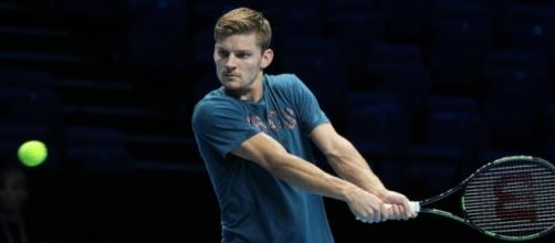 Belgian tennis player David Goffin. [Image by Marianne Bevis / Flickr -- CC BY-ND 2.0]