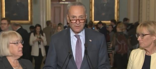 Senate Minority Leader Chuck Schumer after GOP block grant repeal failure. [Image via PBS Newshour /YouTube]